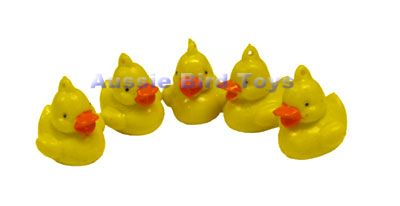RM SD36 SMALL DUCKS